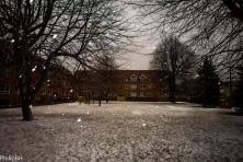 SnowSpring-5